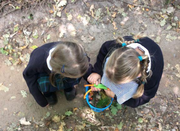 The girls exploring nature